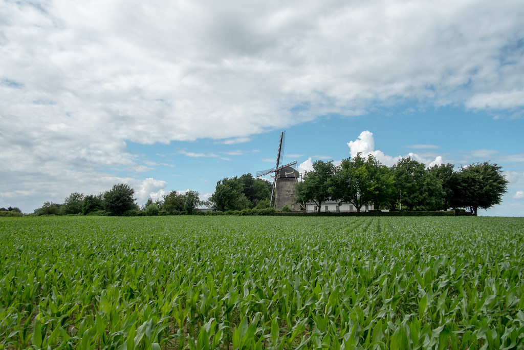 Eroica-Limburg-Windmill