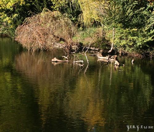 Parc edmond de rothschild ch teau en ruine tang jar - Mobilier jardin hiver boulogne billancourt ...