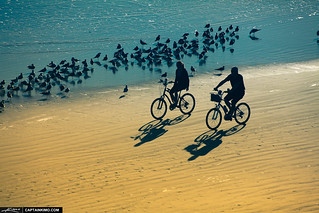 Couples-at-Daytona-Riding-Bicycle-on-Beach | by Captain Kimo