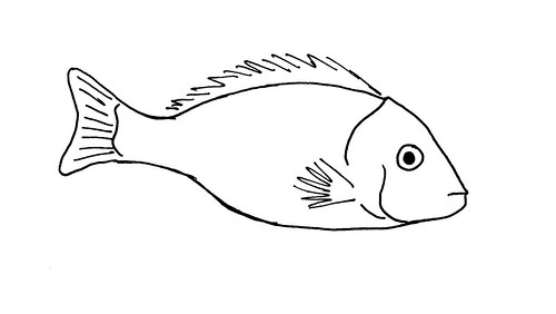 Image Result For Dlaphin Coloring Pages