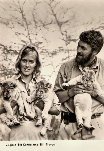Virginia McKenna, Bill Travers