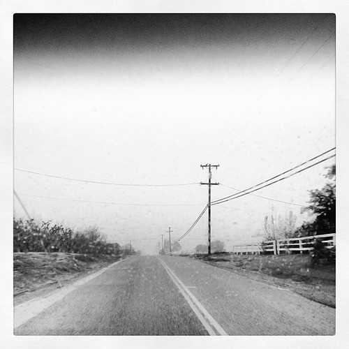 Day 7: From where I live/come from - a foggy, misty day. #Reedley #fmsphotoaday #december | by PuzzledMommy