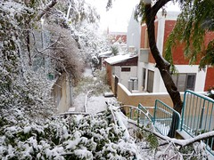 P1050757 Snow in Ariel (1)