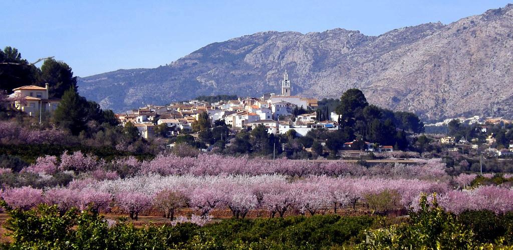 Jalon Valley Spain Jalon Valley | by jo Pugh