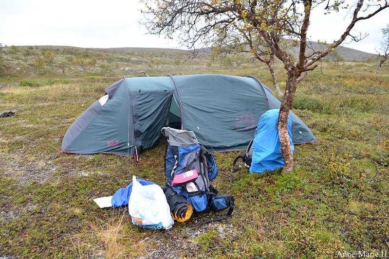 teltta tundra