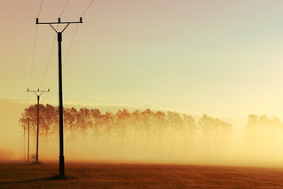 Morning fog *Explored on 12/19/12, Rank 6* | by tobfl