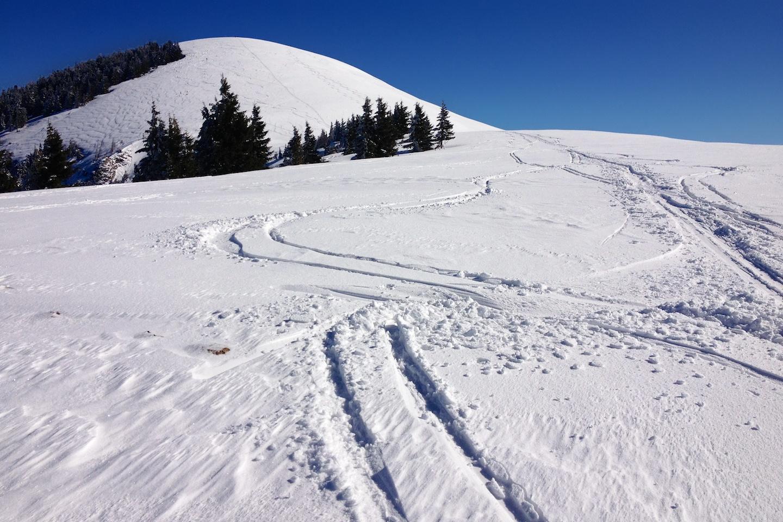Jižní hřbet Trattbergu už před týdnem neměl souvislou sněhovou pokrývku.