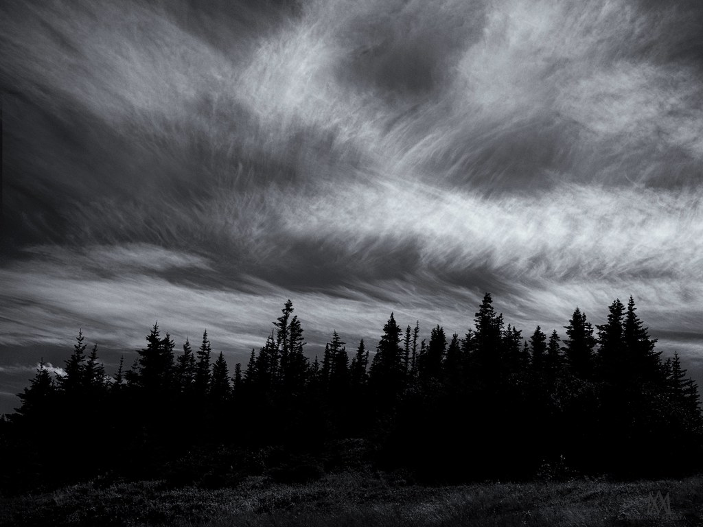 cloudy day | along the Skerwink Trail | marianna armata | Flickr