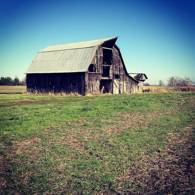 Rural Barn Black Hawk Kentucky Country Field 75937