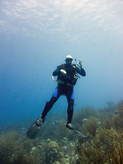 Ok a diver at the fish hut dive site bonaire peter - The dive hut bonaire ...