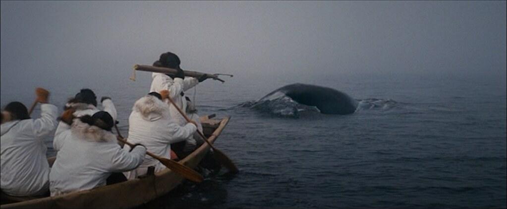 伊努匹人世代捕鯨為生