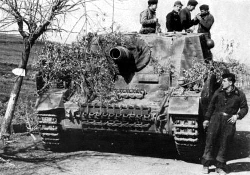"""Panzertruppen of Fallschirmjäger-Panzer-Division """"Hermann ..."""