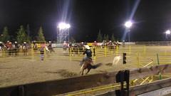 Erbanito-cavalli