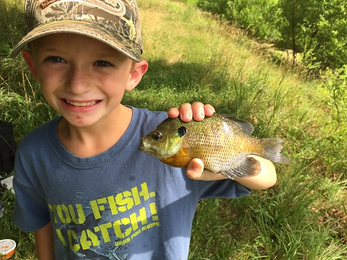 Photo of boy holding bluegill