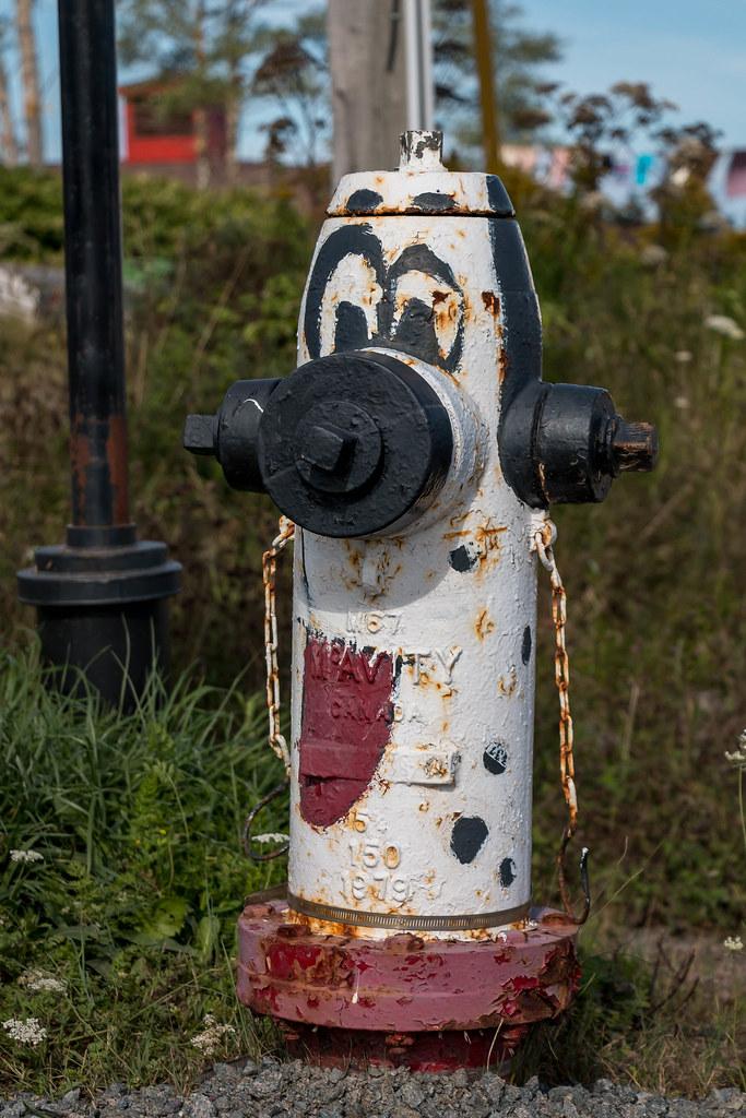 hydrant45.6562111,-60.8752788