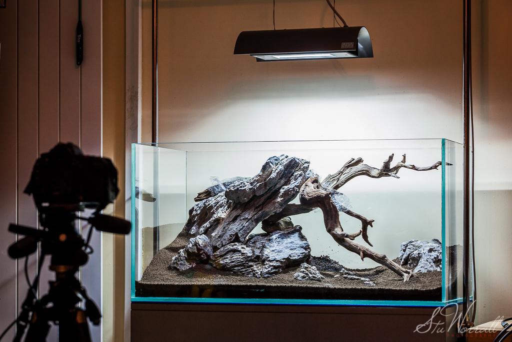 new 90x45x45cm aquascape design | stu worrall | flickr
