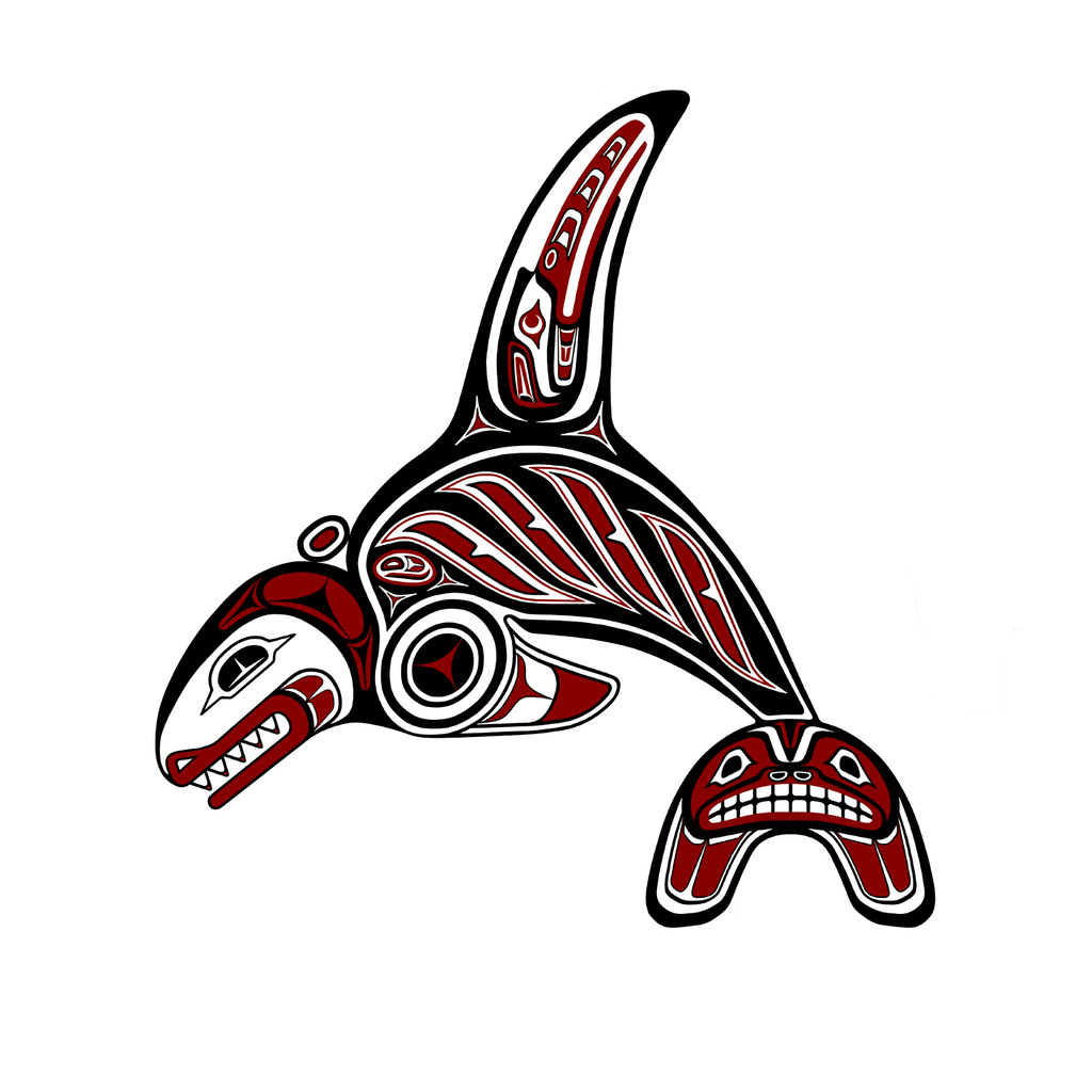 Haida Orca Of The Haida Gwai Orca Of The Haida Gwai
