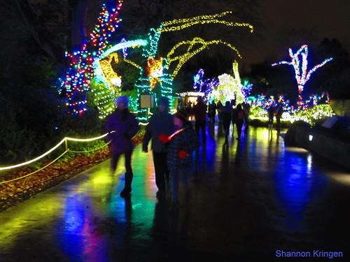 Wild Lights 1889 Wild Lights At Woodland Park Zoo