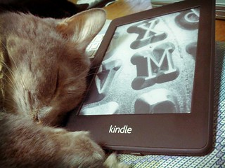 Kindle and Chicco | by jetalone