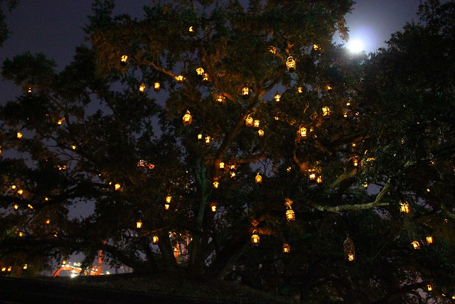 Christmas Town At Busch Gardens Tampa Flickr Photo