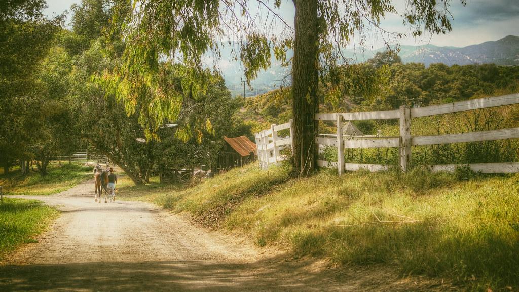 Gracelynd in California