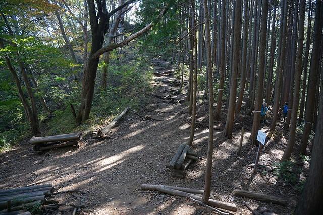 古賀志山 富士見峠から山頂へ