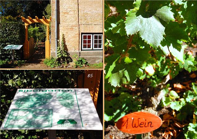 Schleswig Schlei St. Johanniskloster Klosteranlage Klostergarten Kräutergarten Bibelgarten Skulpturenpark ... Fotos und Collagen: Brigitte Stolle 2016