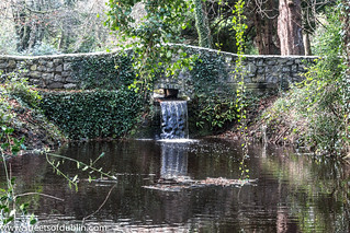 Bushy Park In Terenure (Dublin) - New Years Day 2013 | by infomatique