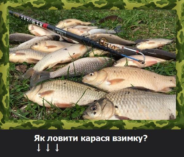 какую рыбу ловят в апреле в белгороде