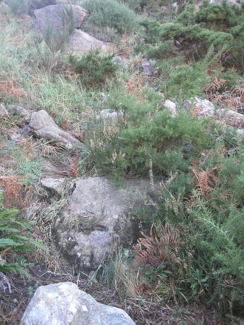 Sendero con pendiente en la subida al monte Pindo