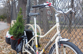 Xtra Holiday Errands | by Lovely Bicycle!