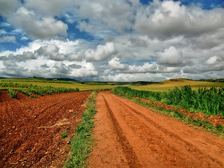 Camino - on the way to Santo Domingo de la Calzada | by HighDispersion