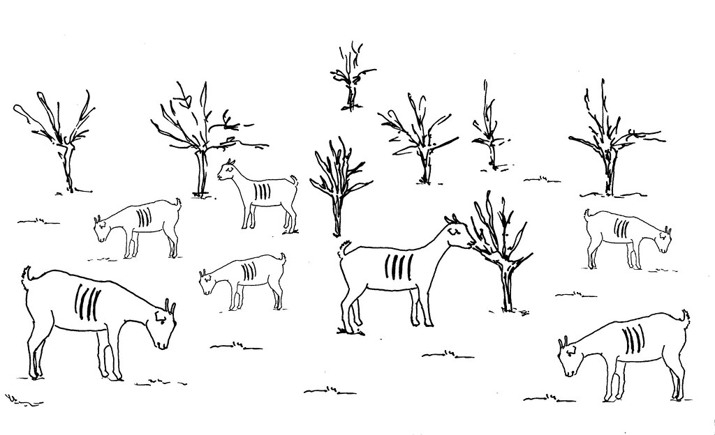 Line Art Information : Line drawing of an overgrazed pasture used in