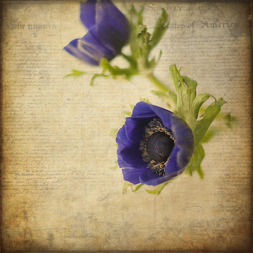 Old Flower Letter Fraudoktor Flickr