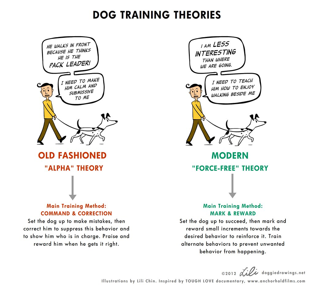 Image Result For Dog Training Reading