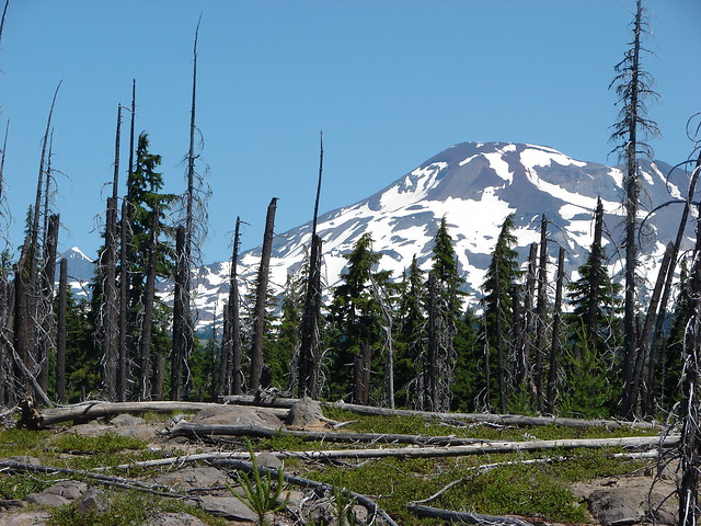 Middle and South Sister