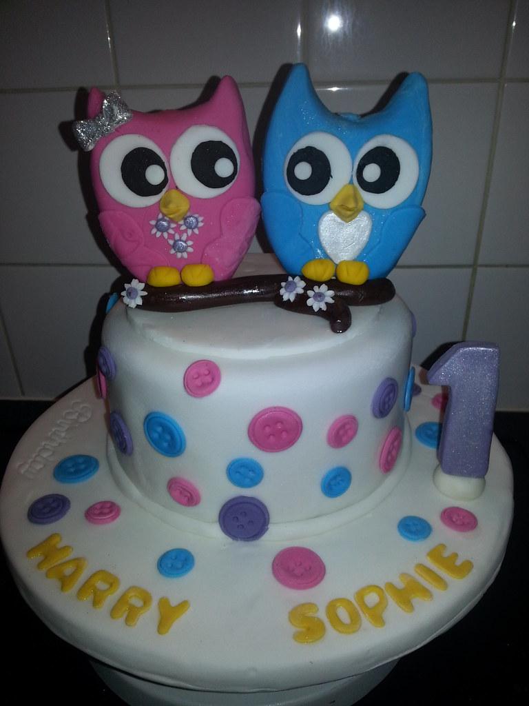 My twins 1st birthday owl cake My twins owl birthday cake Flickr