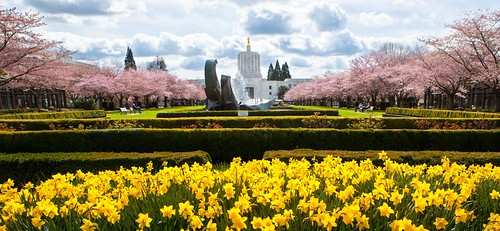 Oregon State Capitol in Spring | by hayespdx
