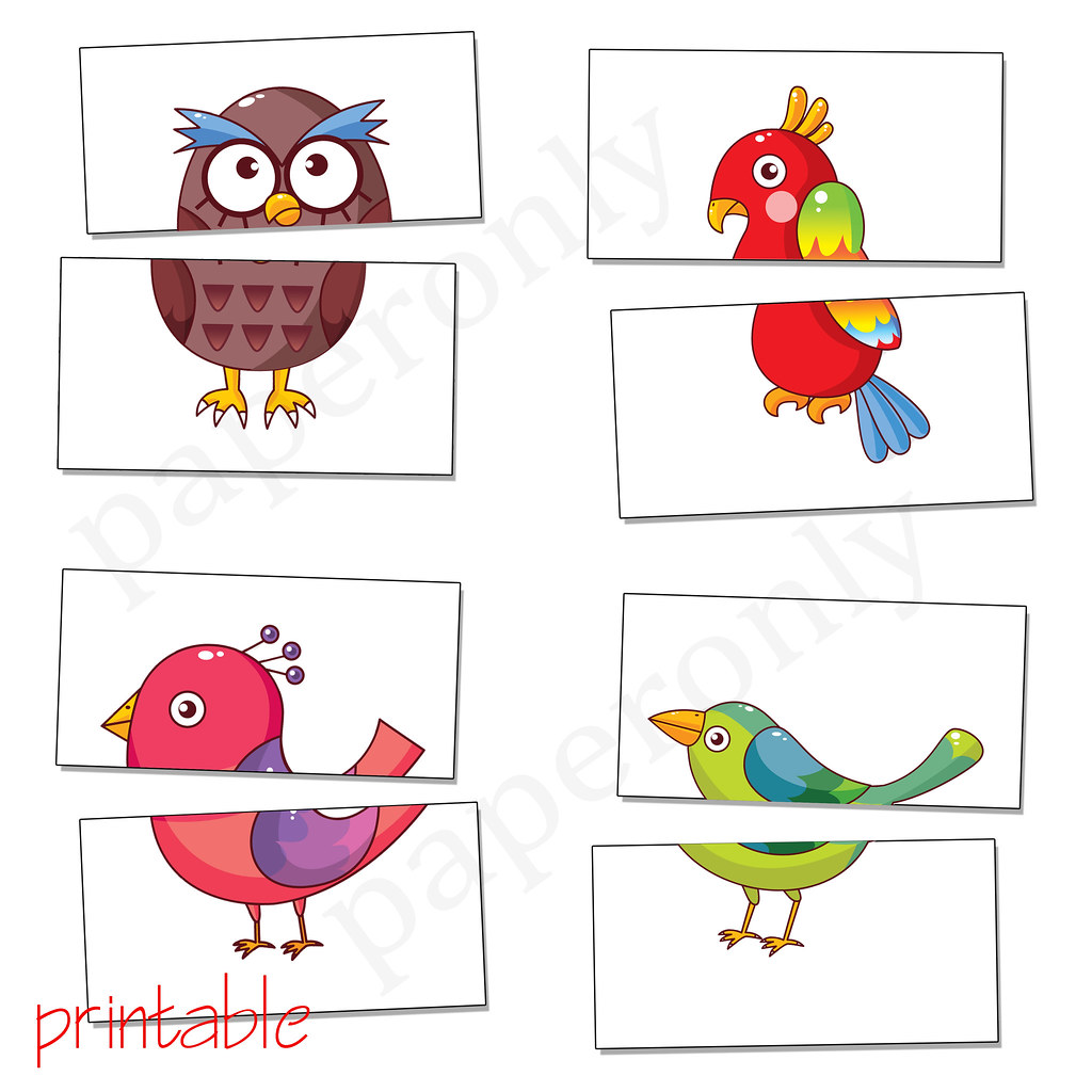 Complete The Birds Flash Card Printable Pdf On My Blog Flickr