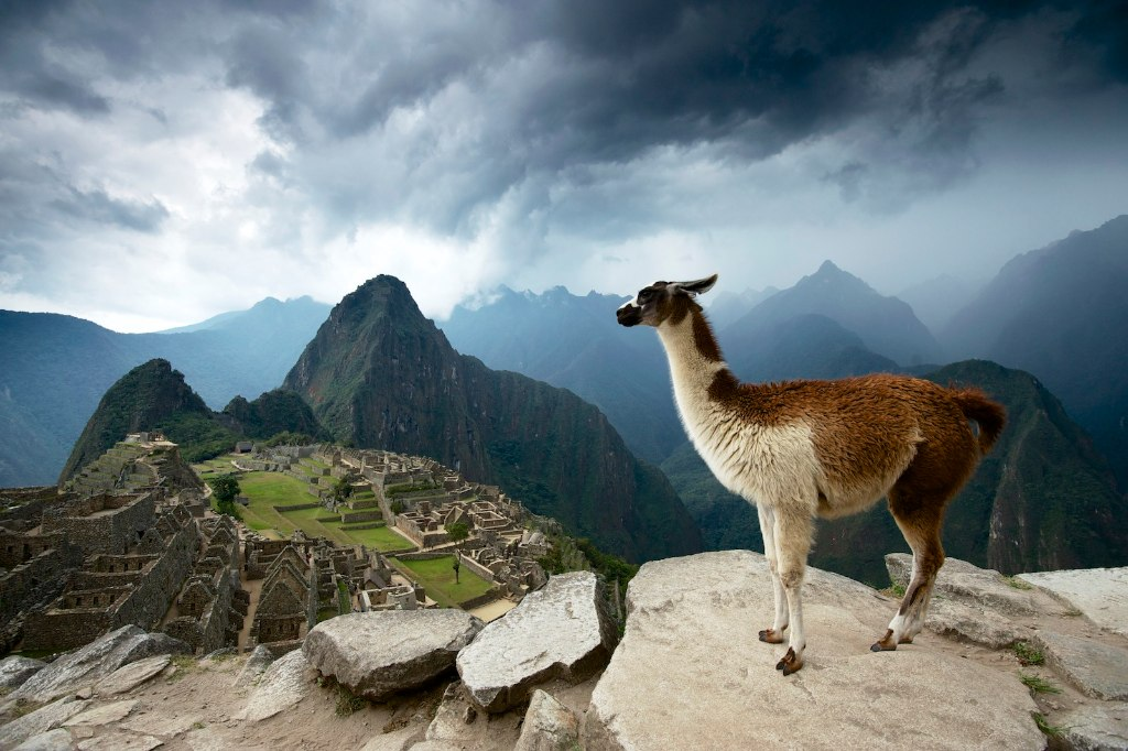 Image result for machu picchu from above