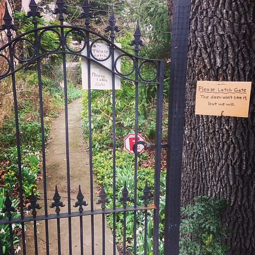 Please Latch Gate | by thegreenpages