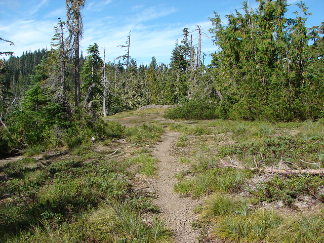 Elkhorn Ridge Trail