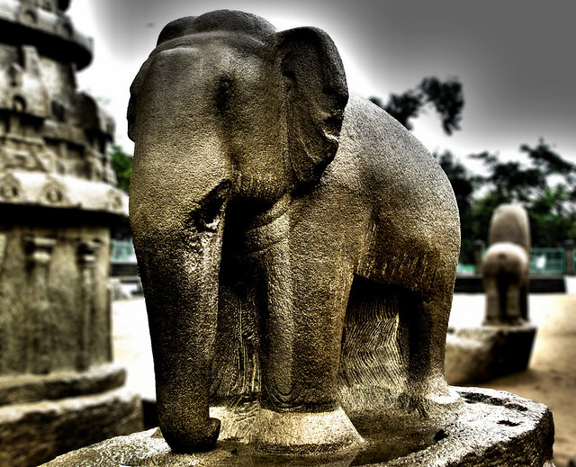 Elephant stone sculpture mahabalipuram flickr photo