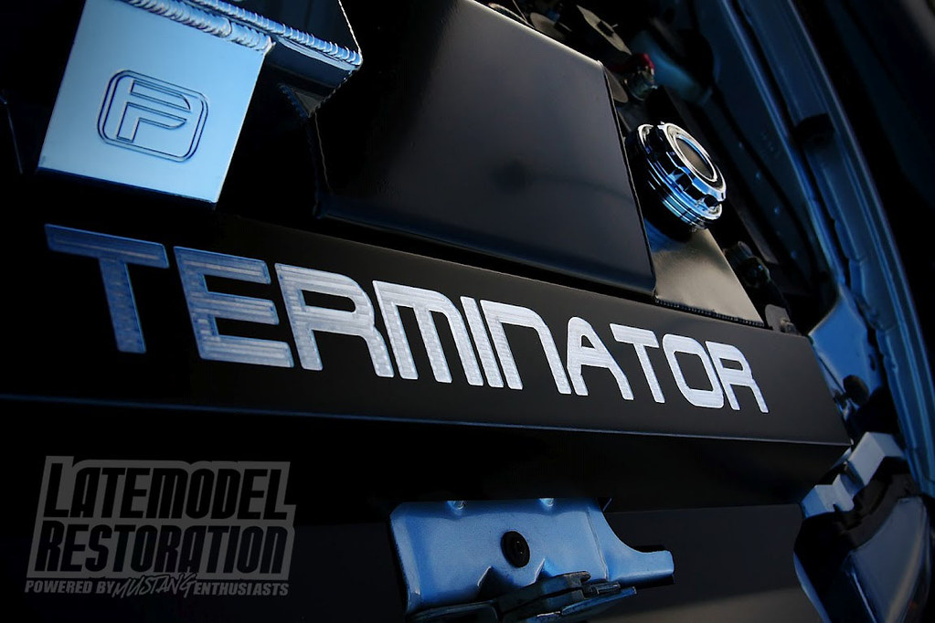 Custom 03 04 Cobra Terminator Radiator Cover At Mustang We
