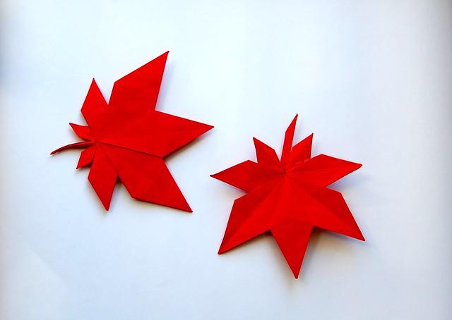 Japanese Maple Leaves | Flickr - Photo Sharing! - photo#28