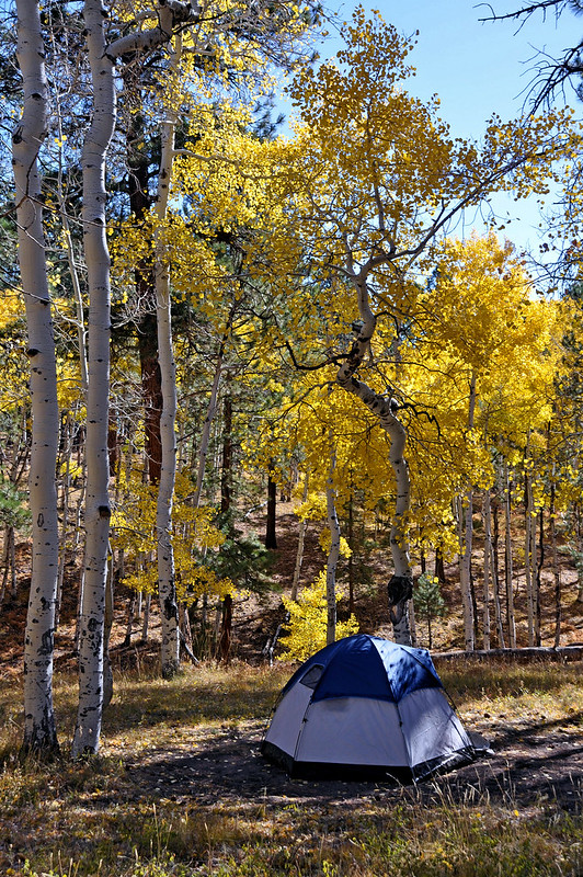 Grand Canyon North Rim Campground - Fall Color; The North Rim Campground is open from mid-May to mid-October. Operated by the National Park Service.. . There are no hook-ups, however, there is a dump station within the campground.