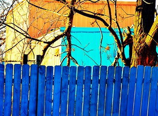 blue fence | by joshhikes