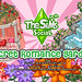 thumb_Secret-Romance-Garden_UnreleasedItems