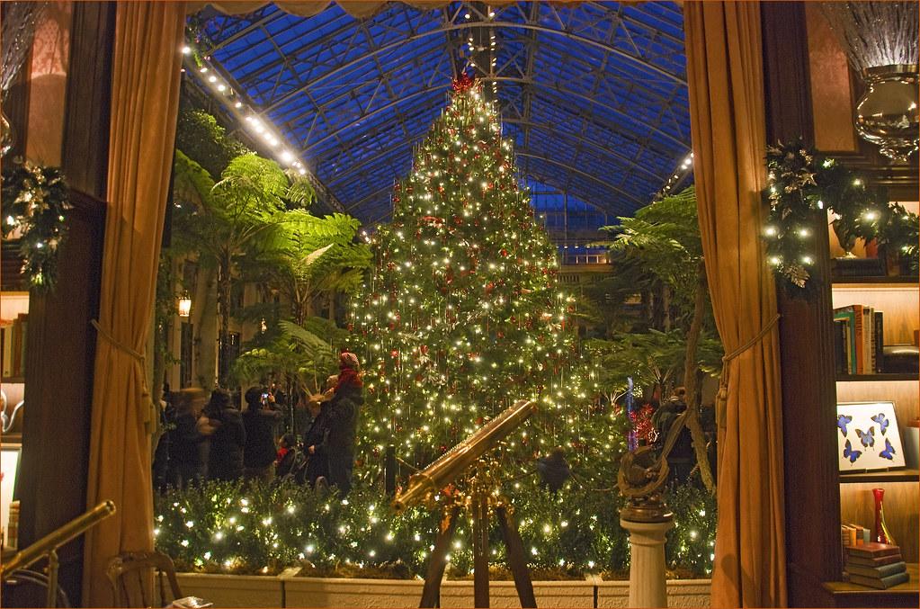 Christmas Tree Longwood Gardens Conservatory Pa Decem Flickr