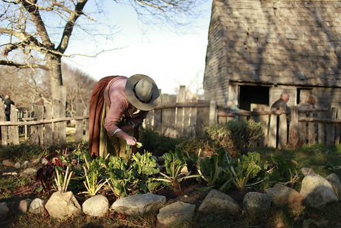 Plimoth Plantation - Plymouth | by Massachusetts Office of Travel & Tourism